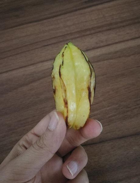 میوه ستارهای یا کارمبولا